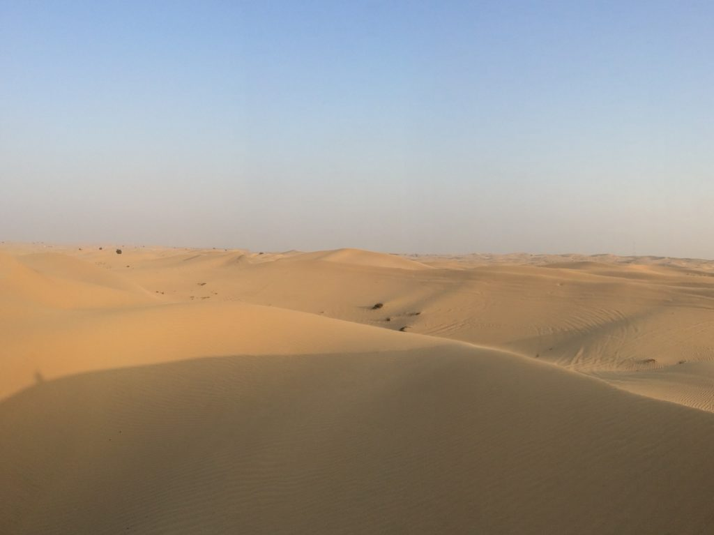 Dunes à Abou Dhabi