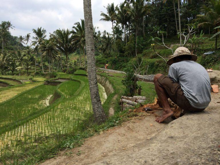 Gunung Kawi, entre temple et rizières