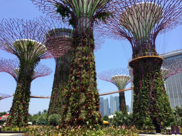 Prendre un peu de hauteur à Singapour