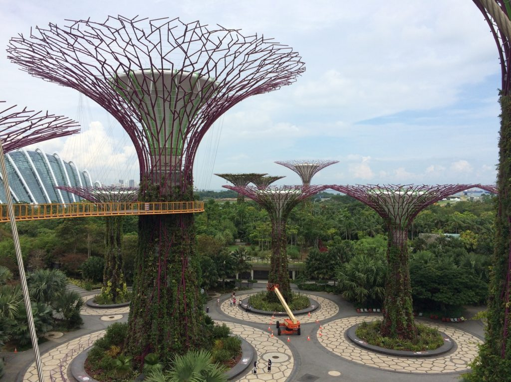 Supertrees Skyway à Gardens by the Bay
