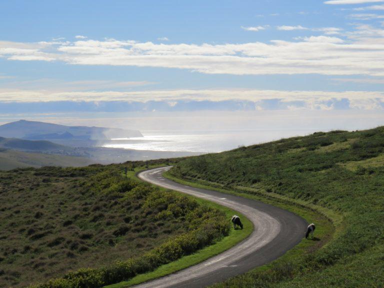 Rapa Nui, la terre du rite de l'Homme-oiseau