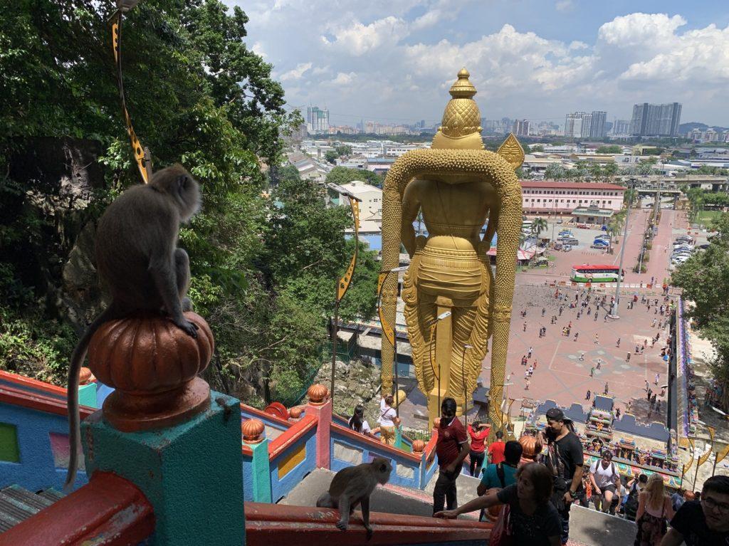 Singe et vue sur Kuala Lumpur