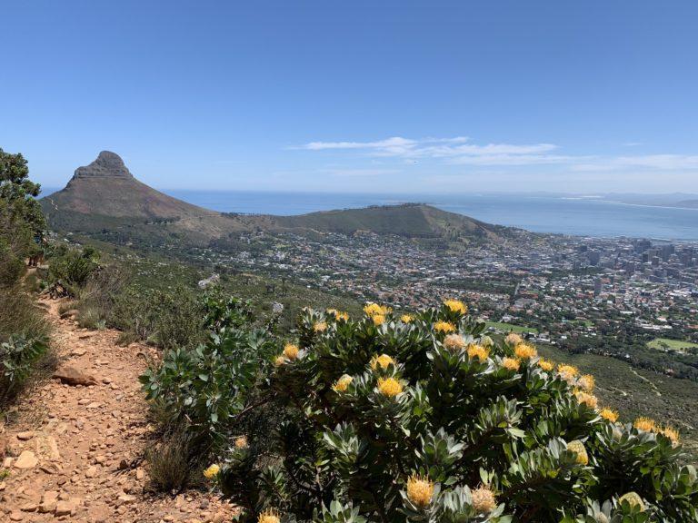 Table Mountain, sur le toit de CapeTown